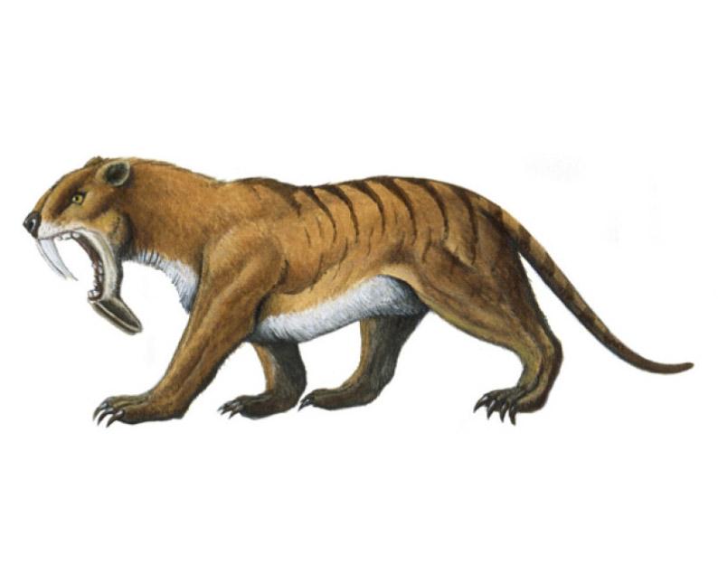 Carlos Velázquez Gigantes prehistóricos