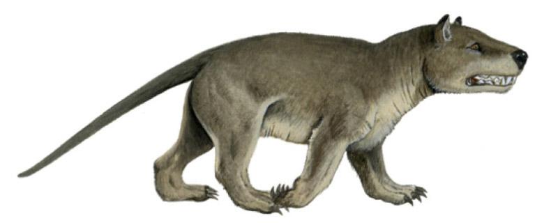Gigantes prehistóricos · SM