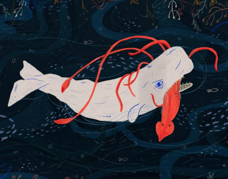 Llamadme Moby Dick · Fiesta del libro y la cultura de Medellín