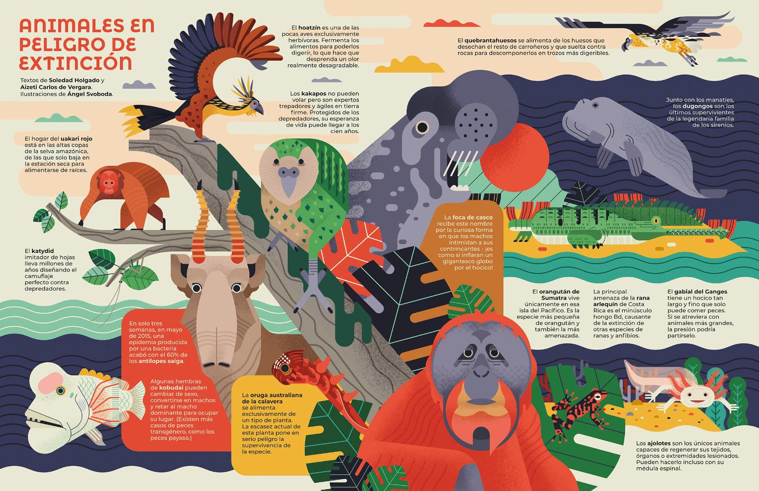Ángel Svboda Animales en peligro de extinción
